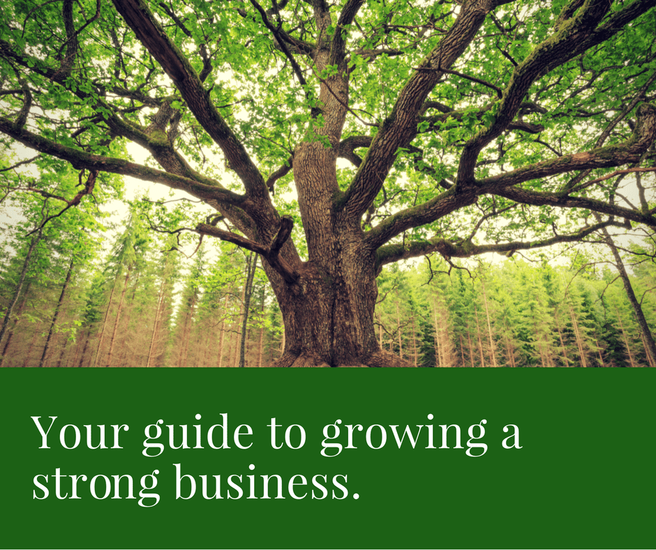 Sustainable growth = sustainable business.