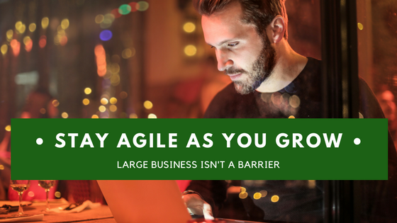 Staying agile as you grow – what your organisation